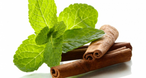 Peppermint oil and cinnamon are effective wound healers