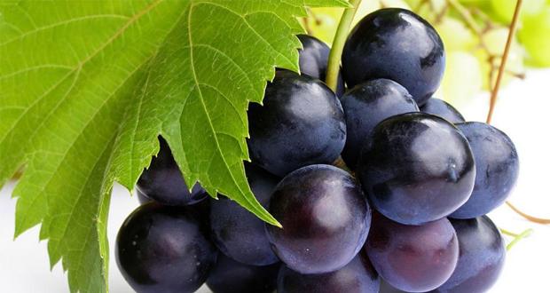 Druivenpitextract 'effectiever dan chemo' bij vergevorderde kanker