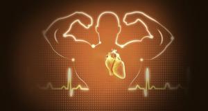 Nieuwe studie bevestigt: verzadigde vetten beschermen tegen hartziekte
